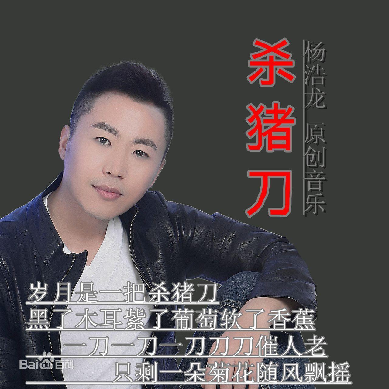 杨浩龙 杀猪刀 时间是把杀猪刀