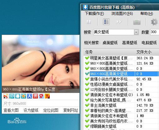 """百度图片下载器 主要功能 (一),支持"""" 百度图片搜索引擎""""图片批量下载图片"""