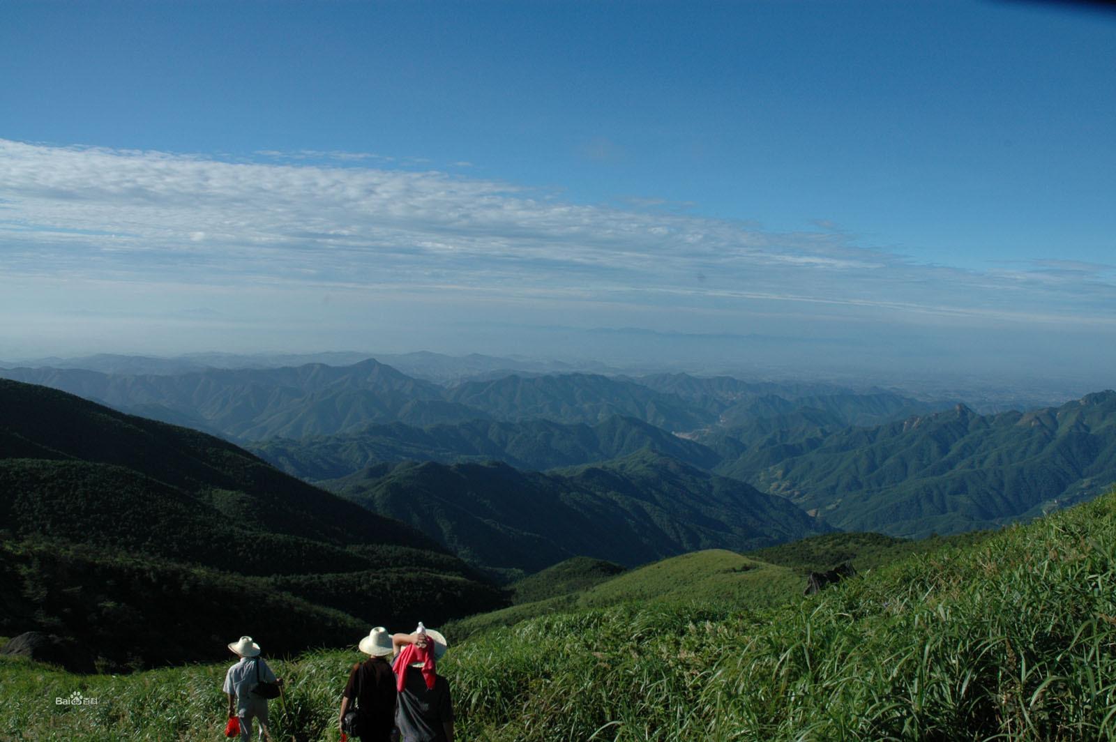 龙山森林公园图片