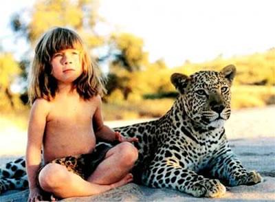 动物从来不凶猛