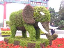 胶南双珠公园