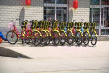 隆升渔村双人自行车