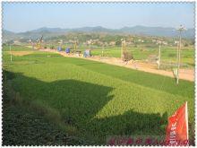 建设中的湘桂铁路复线 祁阳段