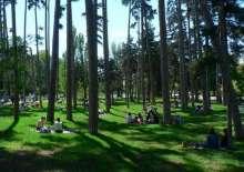 布洛涅森林