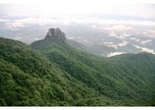 王寿山景观