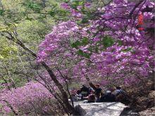 东湖港自然风景区
