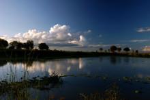 米库米国家公园
