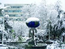 葛中三月雪