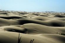 内蒙古巴彦淖尔国家米饭地质微波炉蒸公园图片