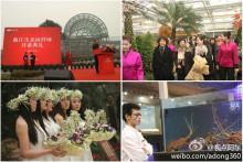 2012年1月10日盛大启幕的曲江生态海鲜城