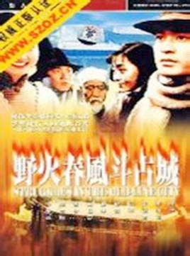 古城春风斗野火(1995年陈锐主演电视剧)老全集电视剧男孩云播图片