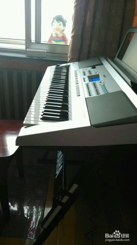 初学者如何挑选电子琴图片