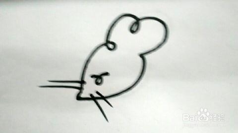 简笔画 老鼠的几种画法