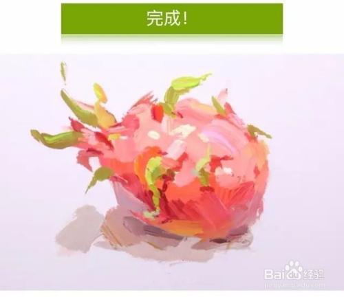 怎样画好色彩静物火龙果呢?图片