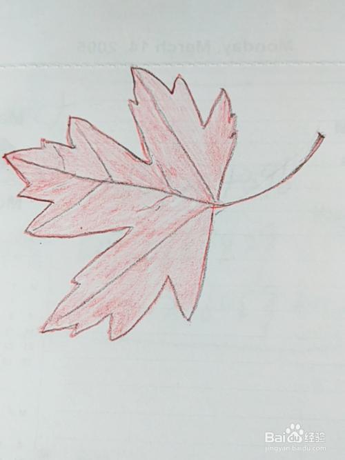 简笔画 红色枫叶画法