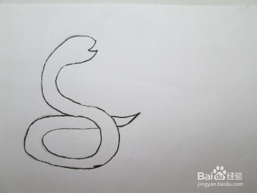 幼儿线描画《花蛇与乌龟》的作画步骤图片