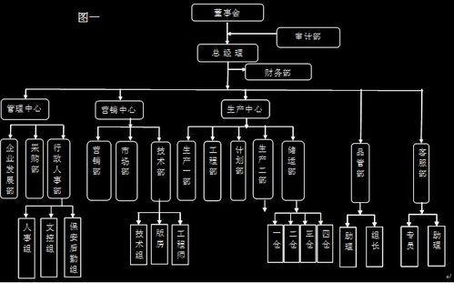 组织架构类型有哪些?图片