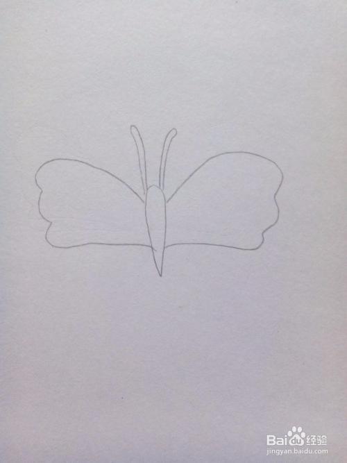简笔画——蝴蝶图片
