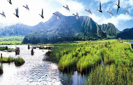 旅游住宿 景点公园 天河区 云南保山腾冲湿地  仅售50元,市场价110元