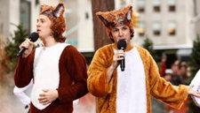 Intolerant狐狸叫兄弟新神曲 与牛奶奇幻旅程