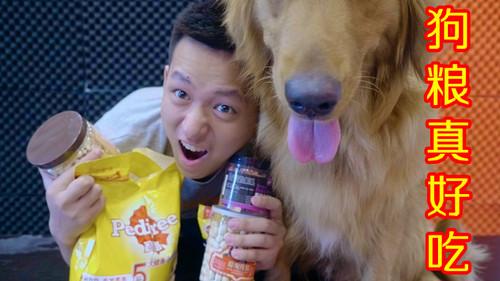狗粮有辣么多种类,究竟哪一种狗粮是最好吃的呢?我和狗给你答案