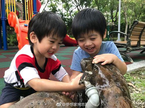 好奇宝宝上线!林志颖双胞胎儿子玩公园水龙头,简直萌哭了