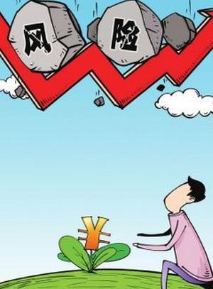 风险基金的风险基金(venture capital)