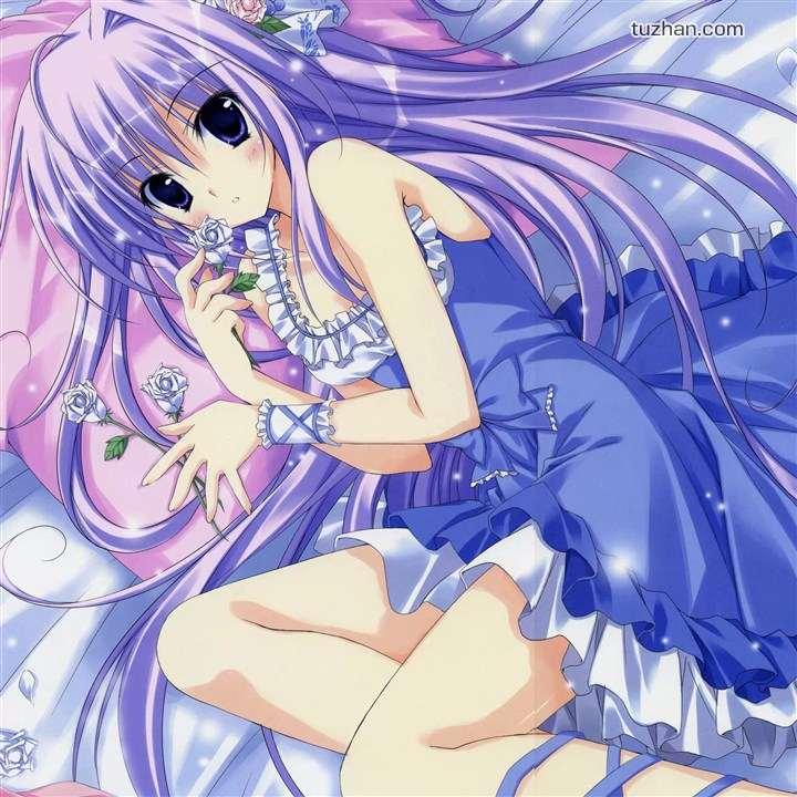求动漫紫发美少女图片