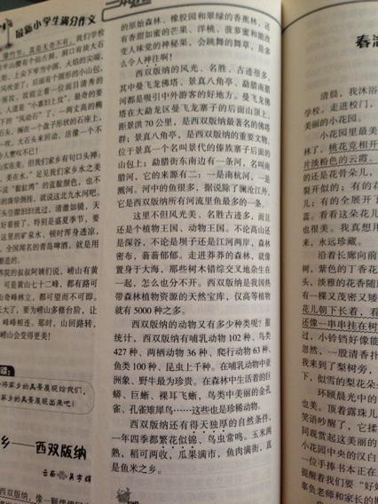 《我的家乡—临武》600字作文大全图片