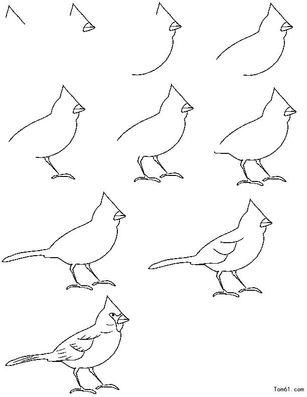小鸟怎么画_百度知道 Flying Birds Drawing For Kids