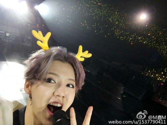 鹿晗最近演唱会的图片图片