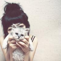有猫和人的头像