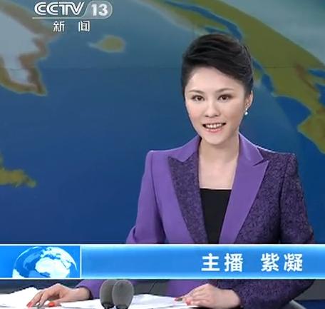 cctv13主持人紫凝_新闻直播间女主持人紫凝,全名祝紫凝,有图为证,待审核后可以看到