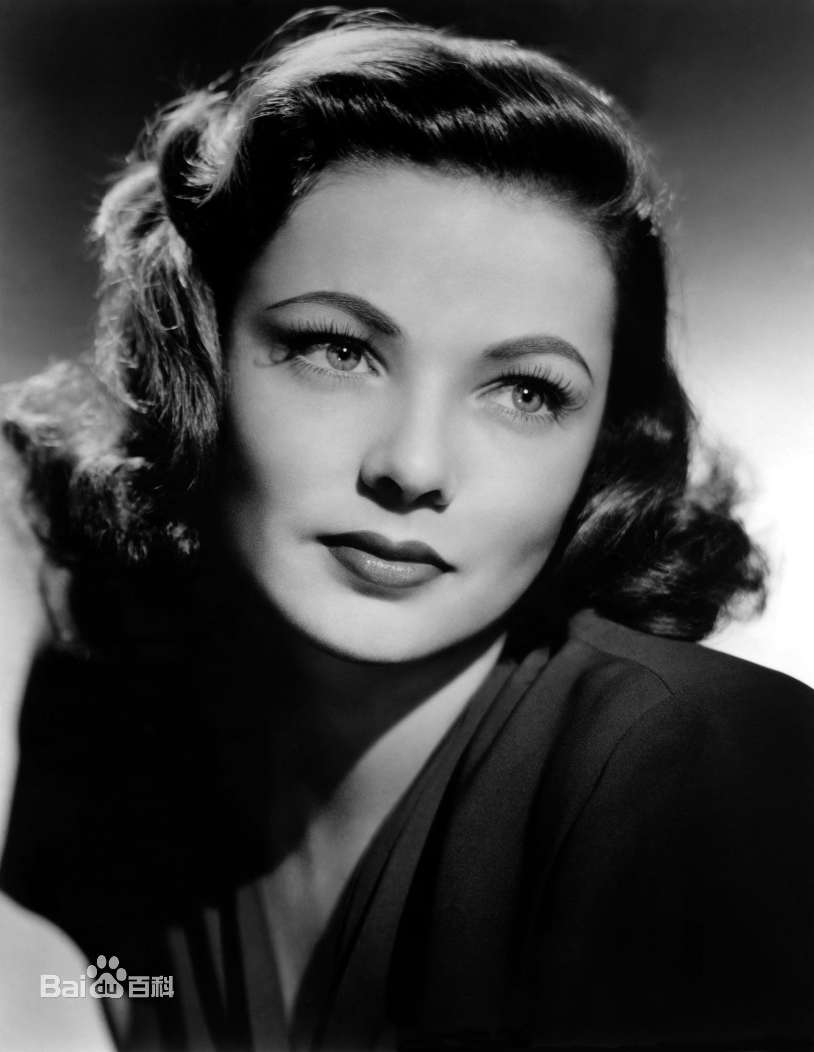 20世纪欧美最美的女明星是哪些
