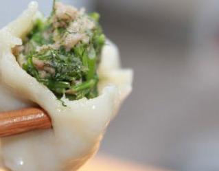 茴香苗饺子_蒜苗和茴香苗豆腐肉能做饺子萱吗