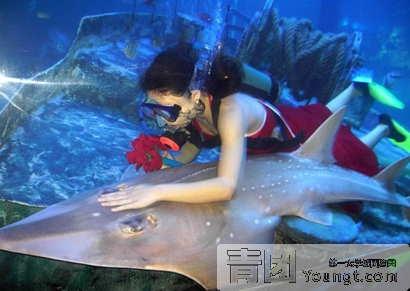 新加坡海底酒店叫什么