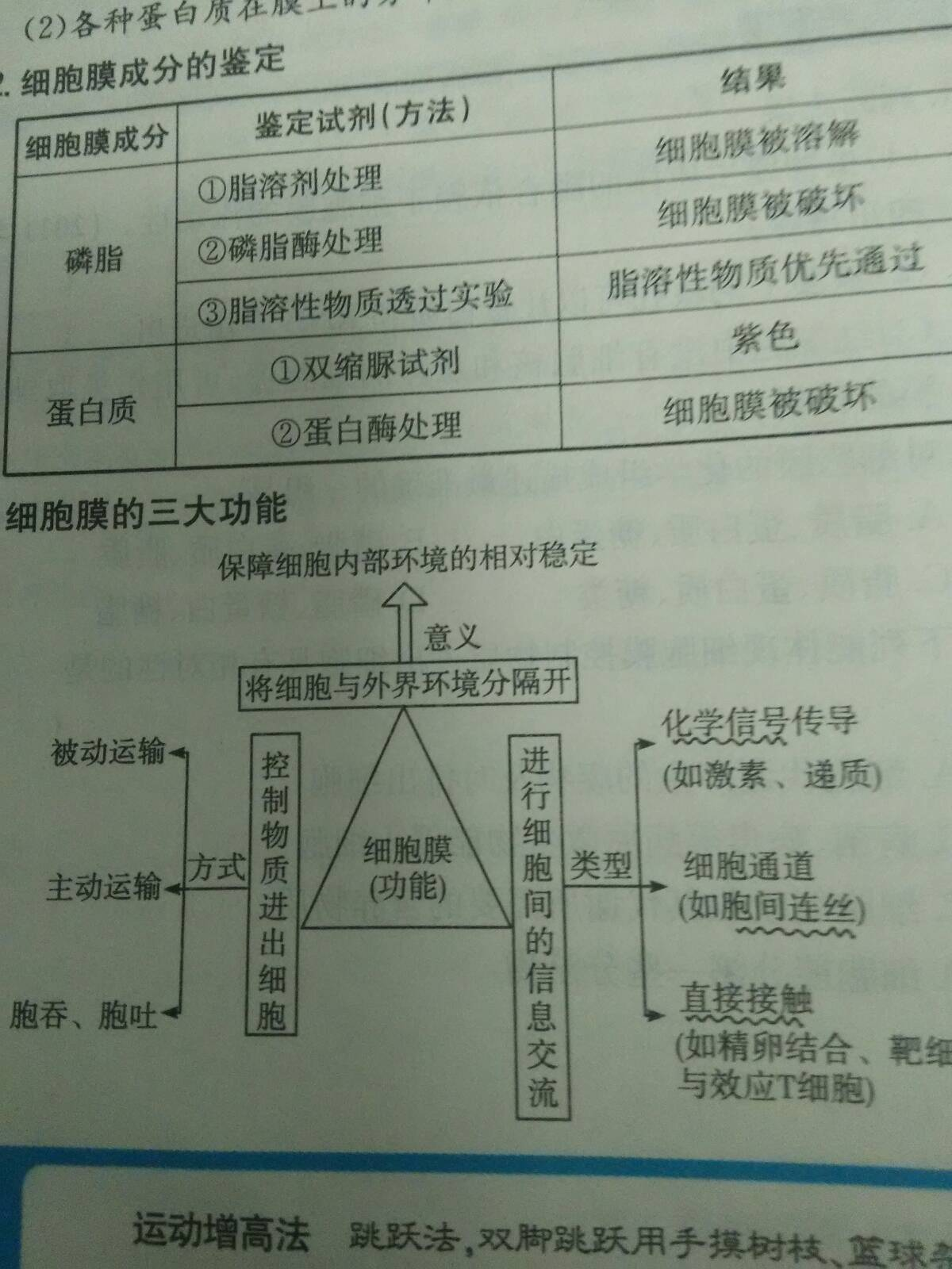 高一细胞v高一一:1,根据结构生物划分细胞2,一个细胞是一个有机的所几南通有市区高中图片