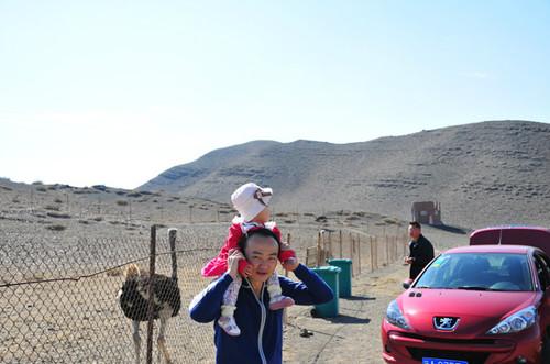 新疆天山野生动物园门票