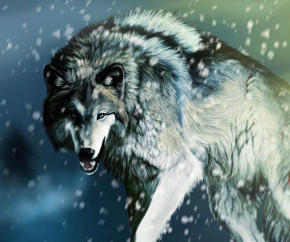 谁有这张狼的全身显现出来的图片,谢谢图片