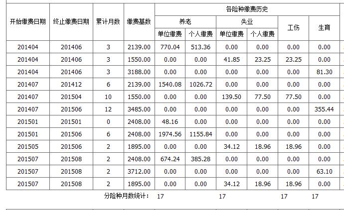 广州社保缴费明细表解读图片