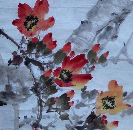 木棉花画图片