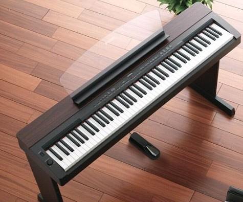 这个琴是电钢琴还是电子琴图片