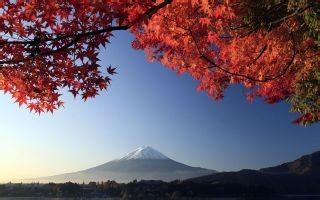 日本自由行旅游攻略