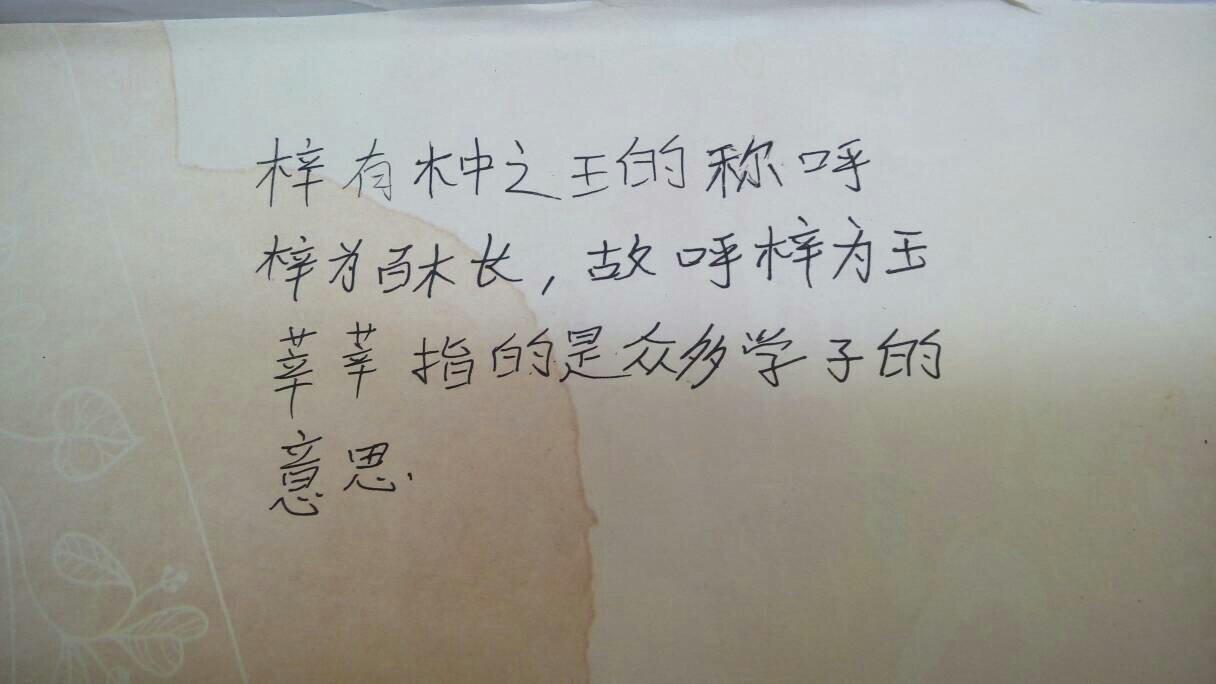 姓王的女孩名字_我姓王,老婆姓游,女儿9月22生,取个女孩名字