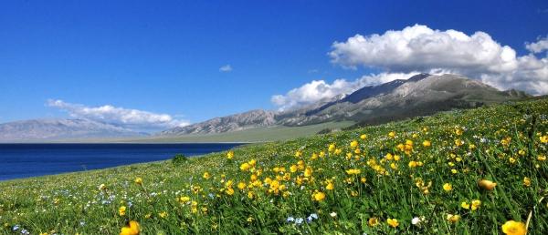 新疆伊犁最佳旅游时间