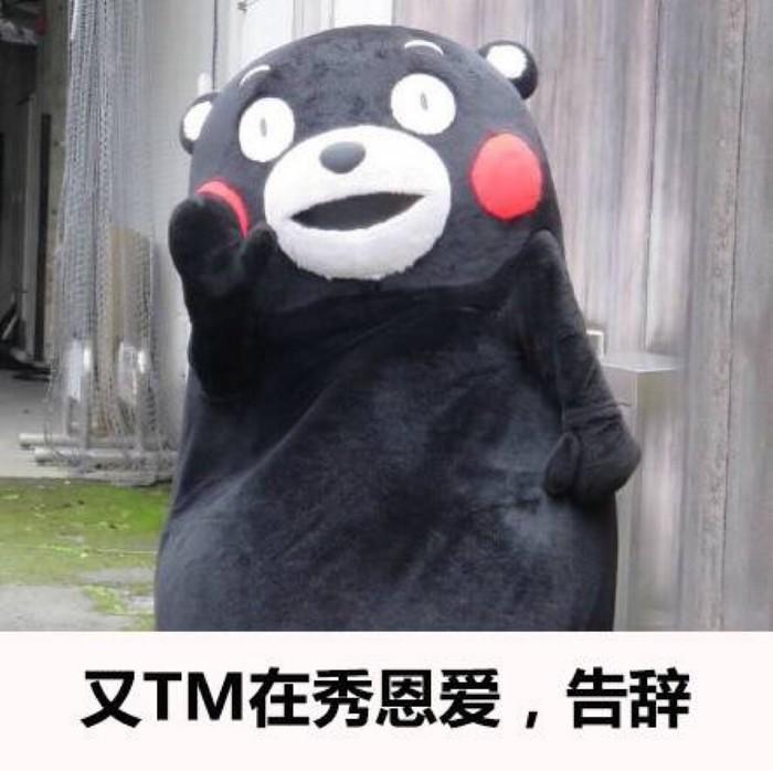 熊本熊的表情包图片