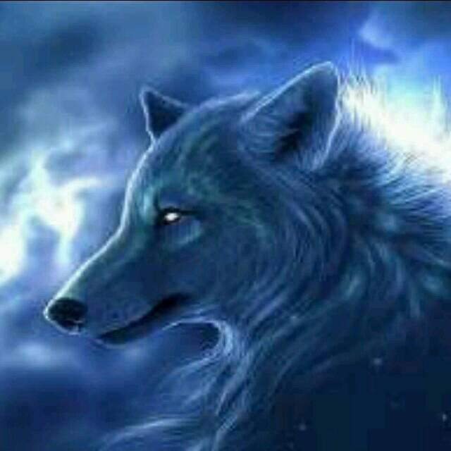 狼国成人色_一位男性朋友微信一直喜欢用高塔做头像 qq喜欢用狼做
