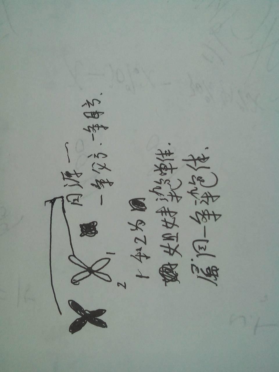 柳岩写真壁纸