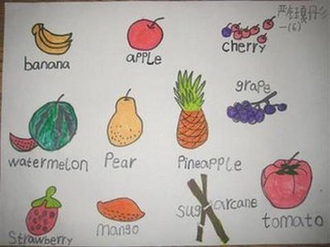英语手抄报水果内容