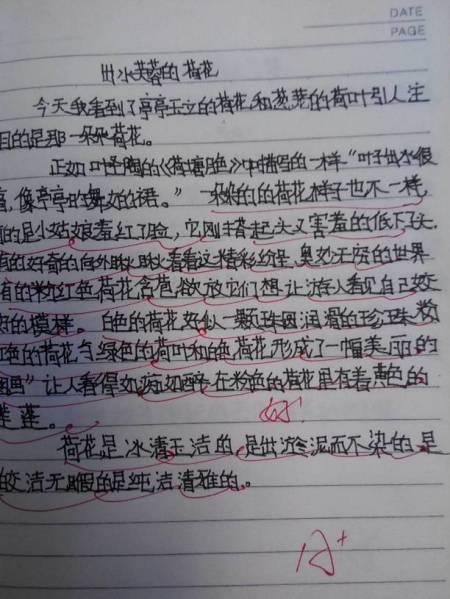 初一周记500字_和书故事300字,周记300字.